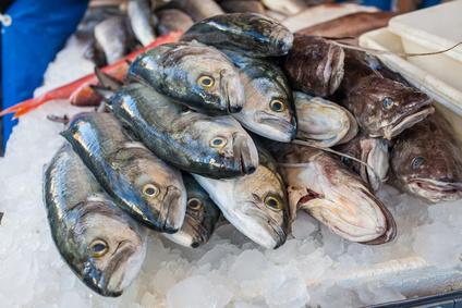 ブラジル 魚 中国からの輸入 水増し 化学物質