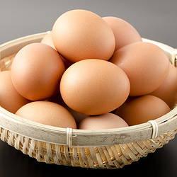 卵 フィプロニル 汚染