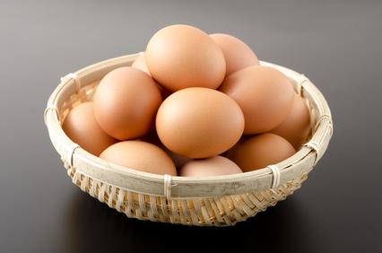 殺虫剤 卵