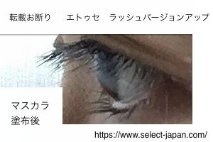 ettusais エテュセ ラッシュバージョンアップ マスカラ 下地 日本製 made in japan 塗った後