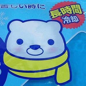日本製 made in japan 氷枕 保冷剤 アイスノン やわらかクールチャージ 紀陽除虫菊