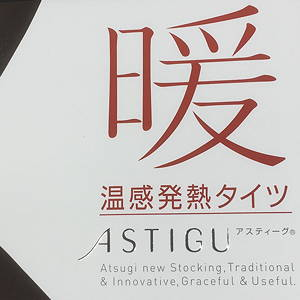 ATSUGI アツギ ASTIGU アスティーグ タイツ 暖 110 日本製 MADE IN JAPAN