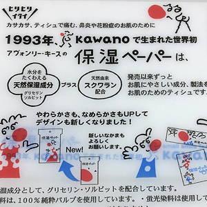河野製紙 保湿ペーパー 保湿ティッシュ 世界初 日本製 made in japan ポケットティッシュ