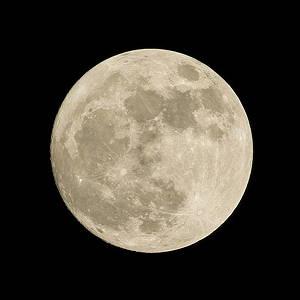 月見 由来 十五夜 十三夜 風習 日本